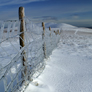 Glaze ice forming on fence leading to Lonscale Fell from Skiddaw