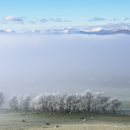 Snow covered Helvellyn Range tops above cloud inversion, seen from Beacon Edge, Penrith, Cumbria on frosty morning